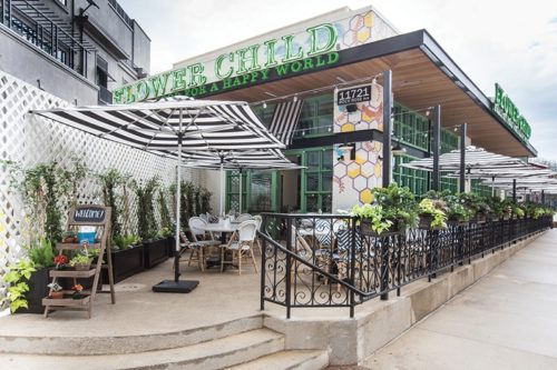 Flower Child - The Domain Austin, Texas | Best Restaurants at The Domain