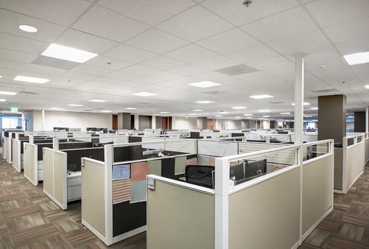 Cubicles in traditional office space
