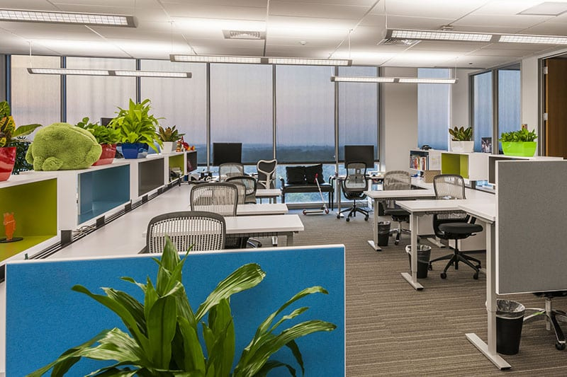Google Office Space | Project Managers Help with Move In Process