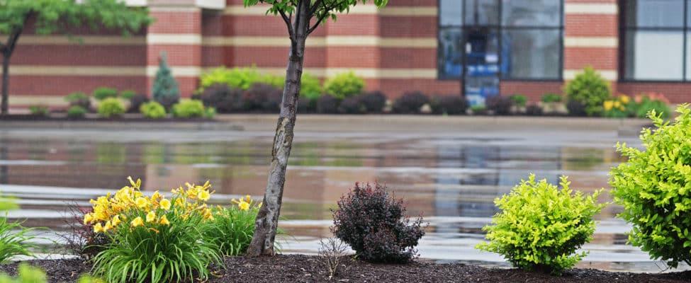 Heavy Rain On Retail Parking Lot