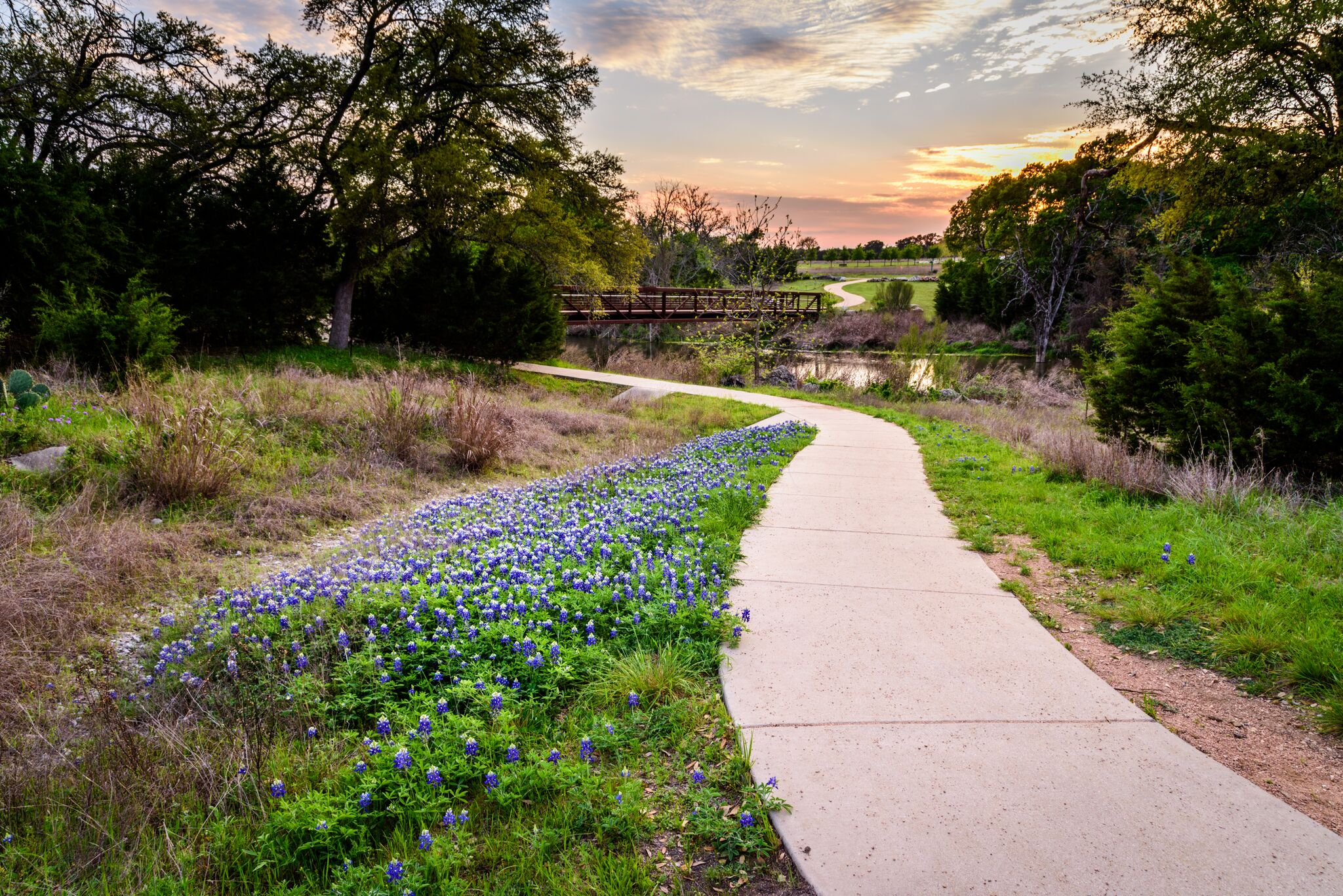 Brushy Creek | Cedar Park Texas